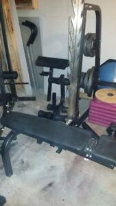 Complete Home Fitness Center for Sale Inc bike weights bench etc Edmonton Edmonton Area image 6
