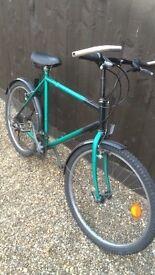 Mans bike