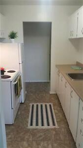 Bright, Spacious, One and Two Bedroom Apartments! Kingston Kingston Area image 5