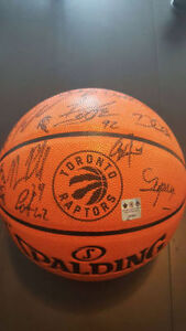 2016-2017 TORONTO RAPTORS signed basketball by the entire team