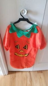 Baby or Toddler Pumpkin Costume