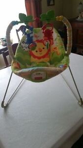Fisher Price Infant Bouncer