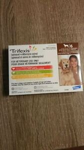 Trifexis Brown X-Lg Dog 6 Chew Pack