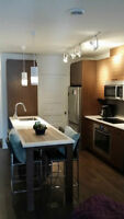 Condo Neuf 4 1/2 A 2 pas marché Atwater-Lachine-Lionel Groulx
