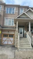 Brand New House for rent in Brampton (Mississauga Rd/Sandalwood)