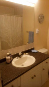 Perfect&Safe Location-Newly updated Room Available from July 1st