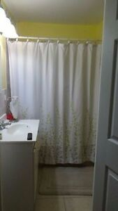Centrally Located 3 Bedroom House - $1200 / Month + POU St. John's Newfoundland image 6