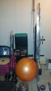 Complete Home Fitness Center for Sale Inc bike weights bench etc Edmonton Edmonton Area image 4