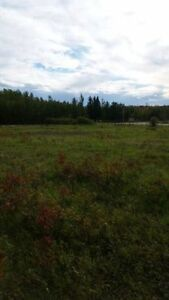 2 Building Lots at 2.45 acres each Strathcona County Edmonton Area image 2