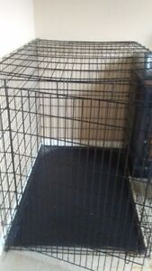 Giant Breed Dog Crate - Amherst, NS