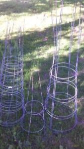 (6) Tomato  Cages/Hoops