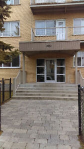 31/2 for rent in Lachine fully renovated July 1st