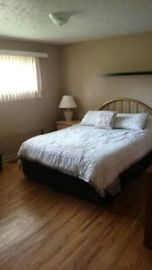 ***Beautiful House for Rent, 5-10min walk to St. Clair College**