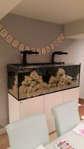 Like New Red Sea Reefer 450 with very High End Equipment