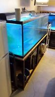 3 Exceptionally well equipped aquariums