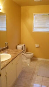 Nice, Clean Room in Great Location in Brampton (L7a 2J6)