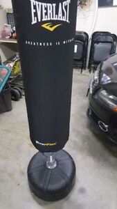 Everlast punching bag like new with 2 sets of gloves
