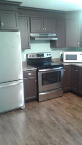 Recently renovated two bedroom Appartment