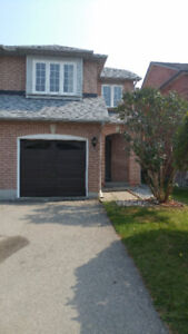 Spacious, newly renovated semi-detached home for rent