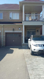 1 Bedroom Basement Apartment for Rent in Vaughan Dufferin&Ruther