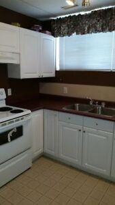 9209-94A Ave - beautiful Lower suite-$99-DD