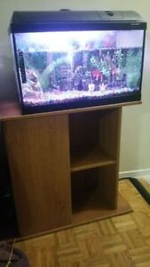 Fish tank with stand and accesories