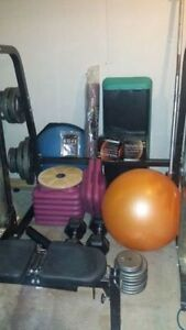 Complete Home Fitness Center for Sale Inc bike weights bench etc Edmonton Edmonton Area image 8