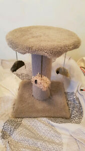 Carpeted Cat Post $15