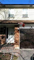 Prime Location, Rare To Find Affordable Town House With Walk-Out