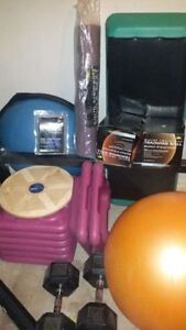 Complete Home Fitness Center for Sale Inc bike weights bench etc Edmonton Edmonton Area image 2