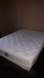 Mattress, bed box free simple frame Edmonton Edmonton Area image 3