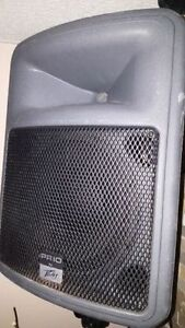 Peave PR10 Powered Speakers (AMPLIFIÉS) 800WATTS Chaque