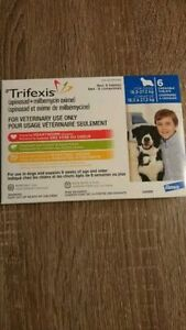 Trifexis Blue Large Dog 6 Chew Pack