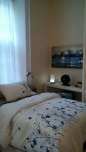 BEAUTIFUL DOWNTOWN BACHELOR - CLOSE TO QUEENS! Kingston Kingston Area image 9