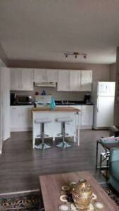 Renovated 2 bedroom apartment - In Sturgeon Falls