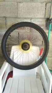 --- BICYCLE TIRE (REAR) ---