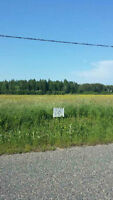 8 acre property in Massey