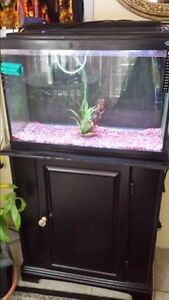 Fish tank and black stand with door and LED light