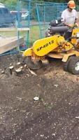 Tree and Stump Grinding