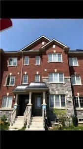 Absolutely Beautiful 2 Years Old Freehold Townhouse