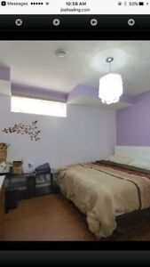 Furnished rooms available on rent - Millwoods