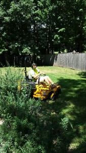 Grass Cutting By Wellcut Property & Tree Care