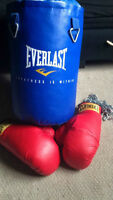 Punching Bag with set of Large Gloves