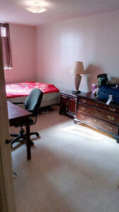 One large size furnished room available for rent