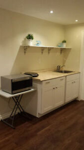 1 bedroom basement apartment in Milton