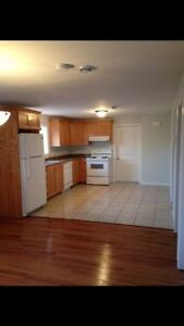 Must See! Beautiful 2 Bedroom Cozy Basement Apartment