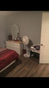 BEAUTIFUL 2 BEDROOM BASEMENT APARTMENT FOR RENT IN PARADISE St. John's Newfoundland image 6