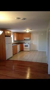 Available Immediately! 2 Bedroom Basement Apartment