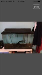 Aquarium 30 gallons with all accessories