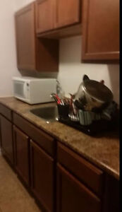Urgent:Seeking Female for Room in 2BR Apt Available - South End